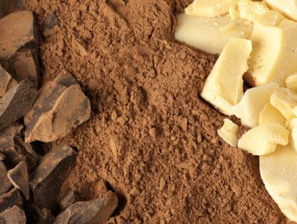 Award Winning Chocolate Company Brisbane